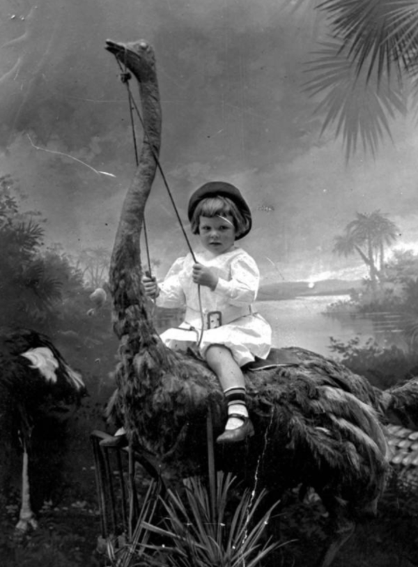 Child On Stuffed Ostrich