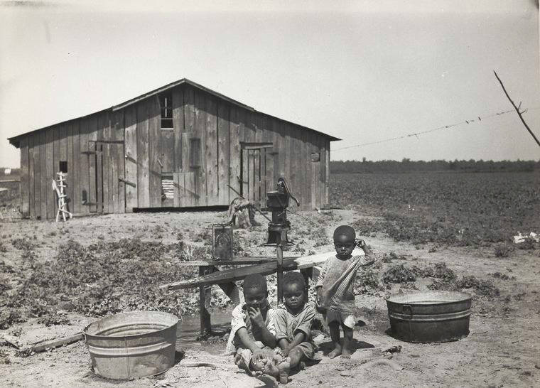 Children Of Sharecroppers