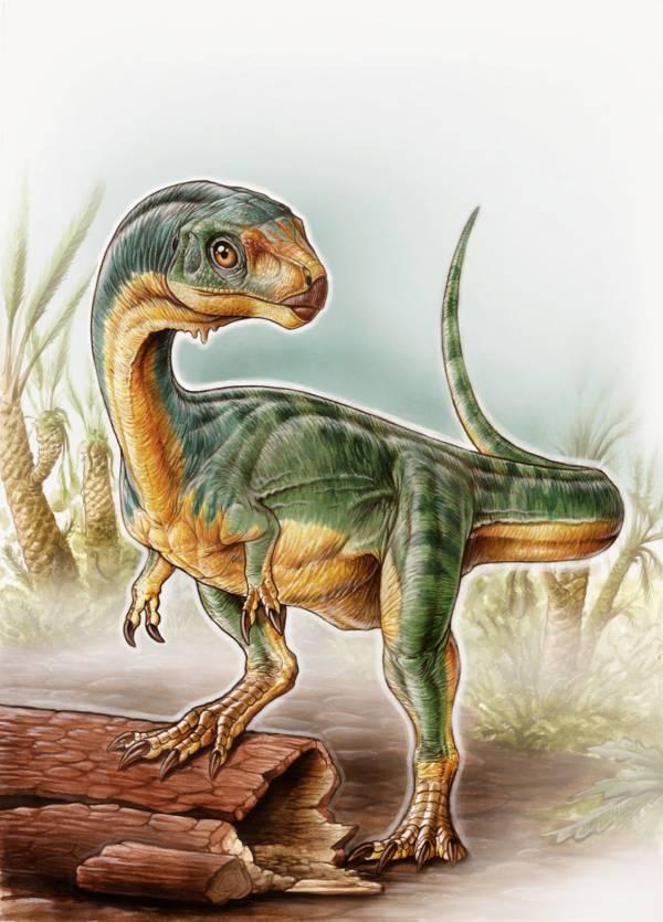 Chilesaurus Up