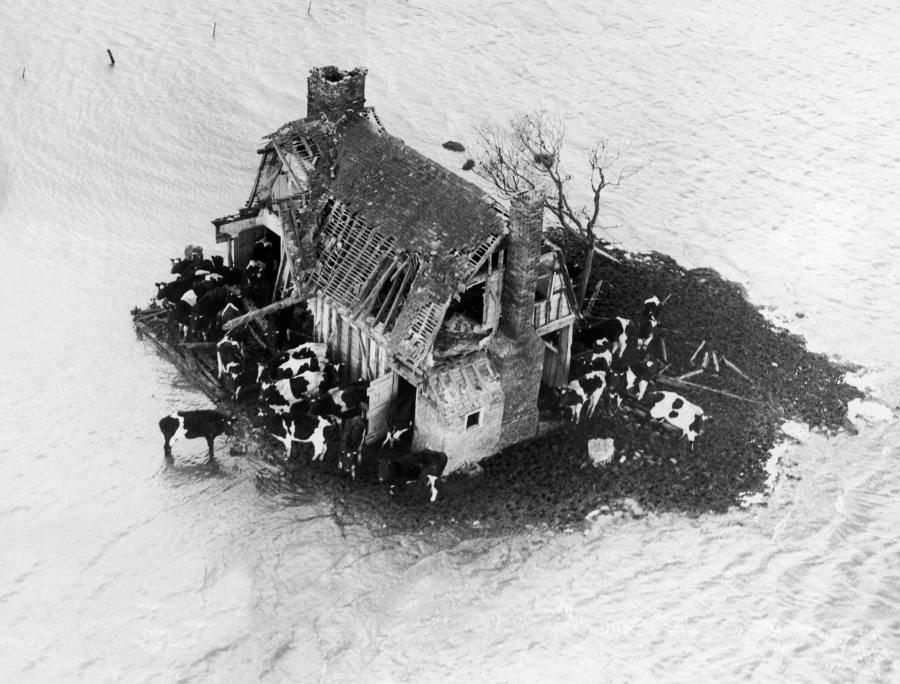 Image result for 1. února 1953 zeelandské pobřeží