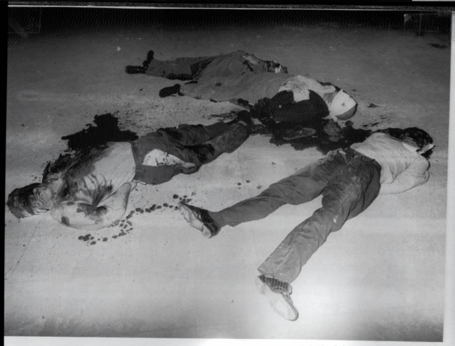 Iranian Revolution Bodies