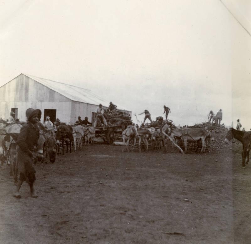 Pietersburg Camp At Work