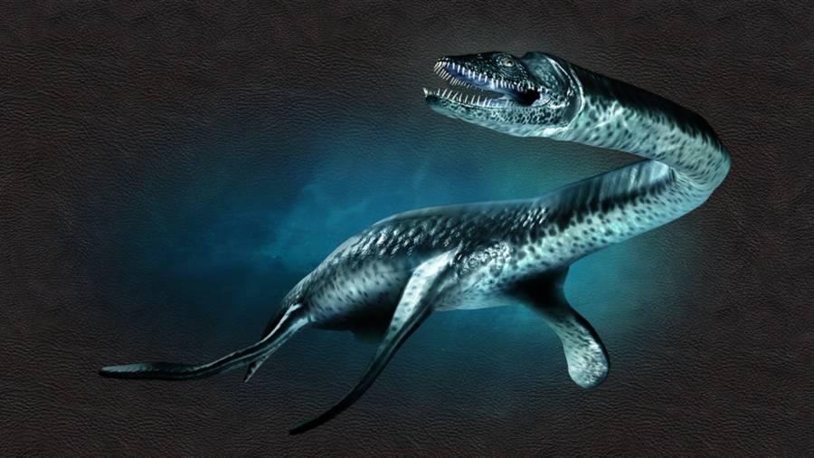 Plesiosaurus In Ocean