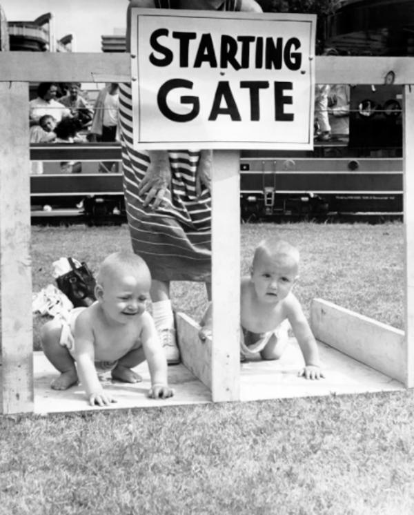 Starting Gate Babies