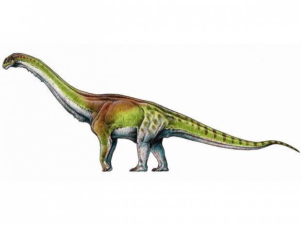 Worlds Largest Dinosaur
