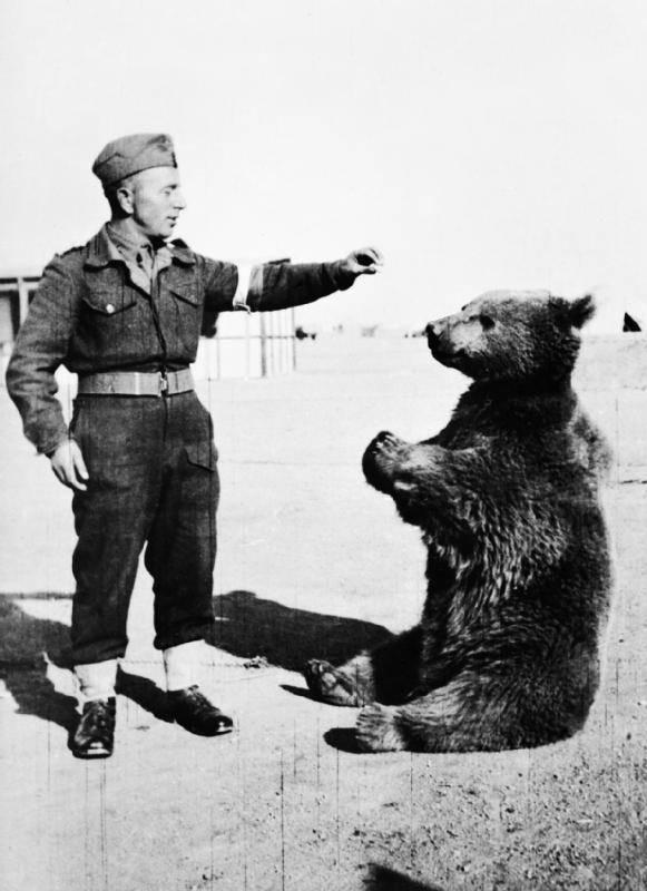 Army Mascots Wojtek the Bear