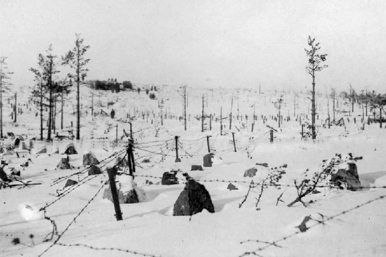Barbed wire in Finland's Mannerheim Line.