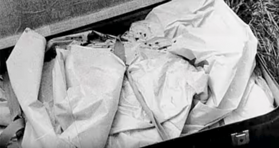 Suitcase With Renee Hartevelt's Remains