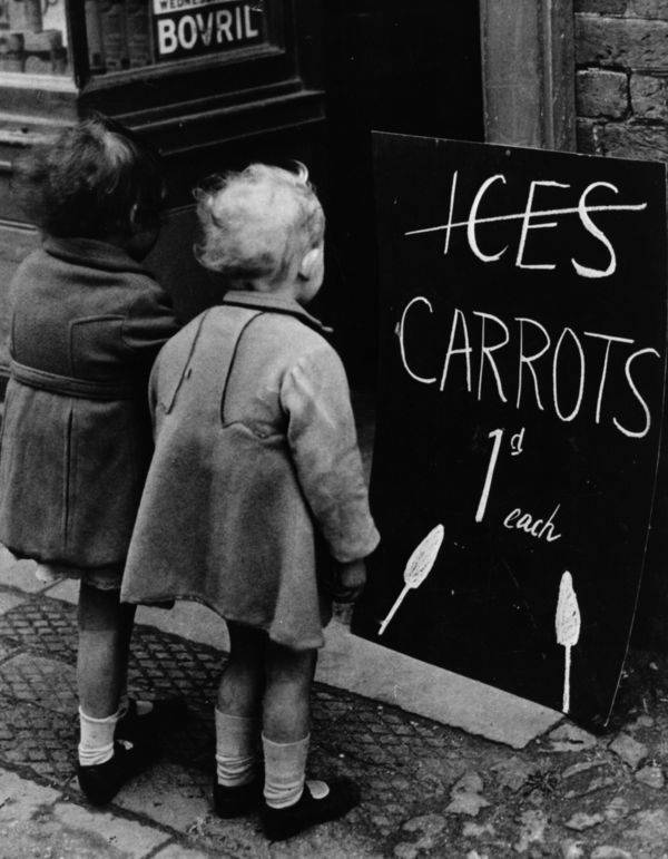 Child Looking At A Sign For Carrots