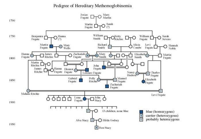 Fugate family tree