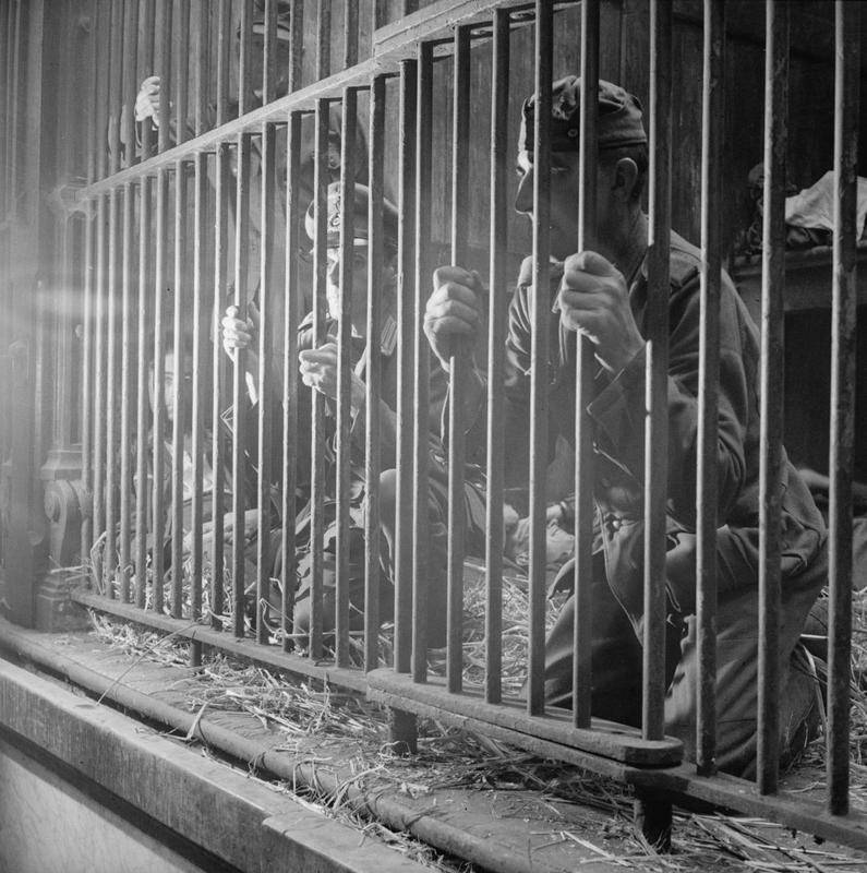 German and Belgian collaborators held in a lion's cage