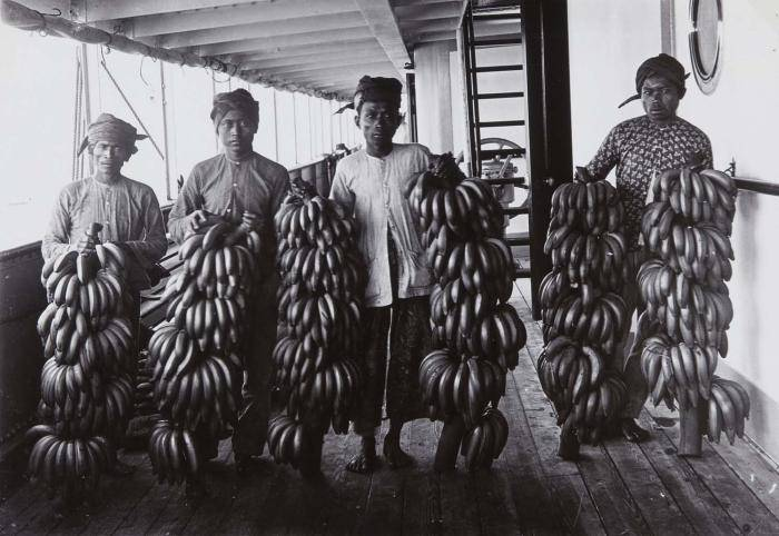 Workers holding bananas