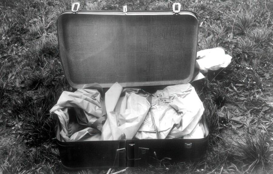Cannibal Suitcase