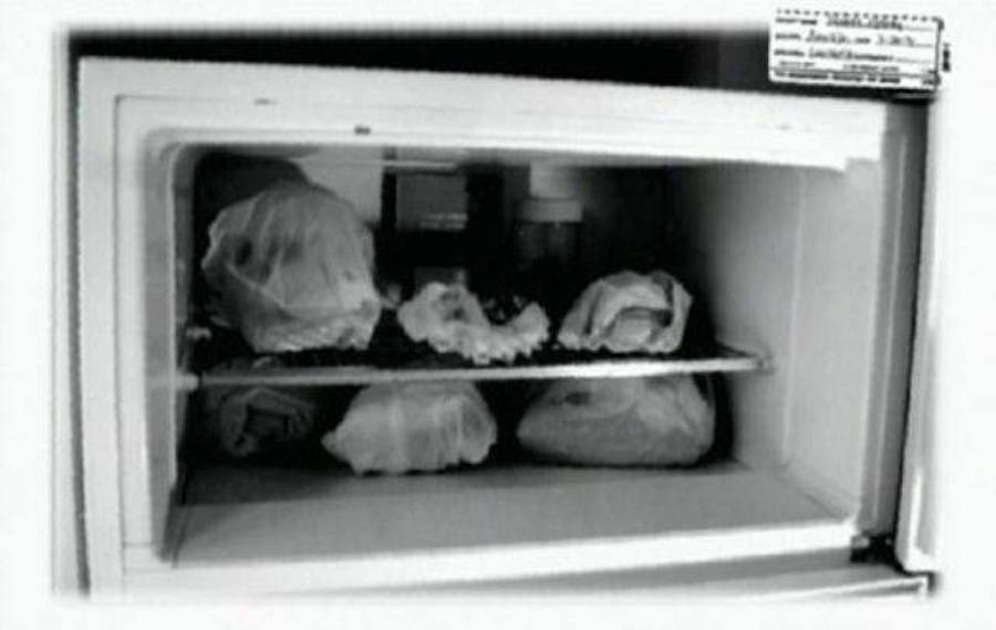 Jeffrey Dahmer Refrigerator