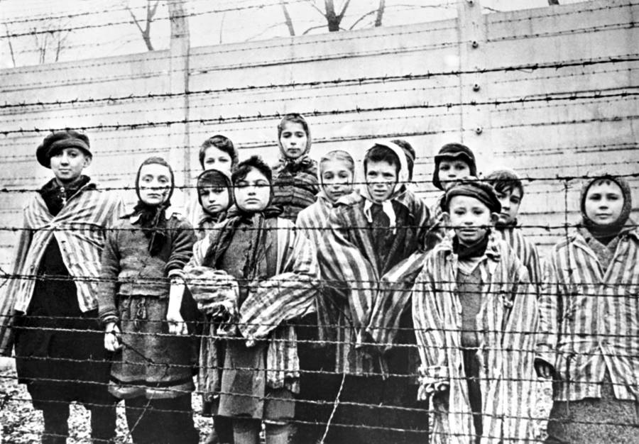 shocking number of millennials ignorant of holocaust poll finds