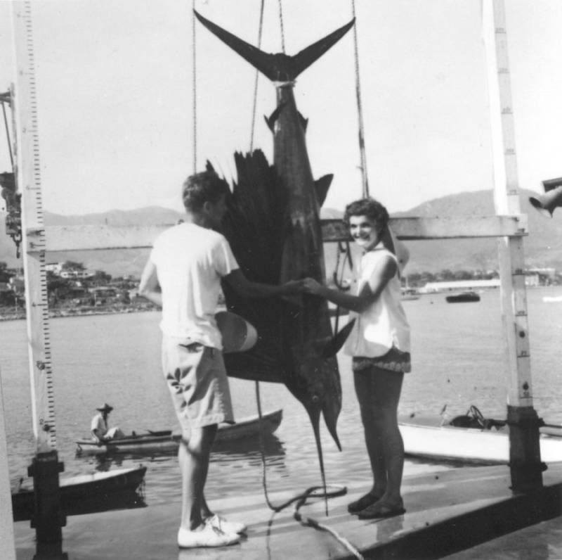 Kennedy Swordfish Hanging