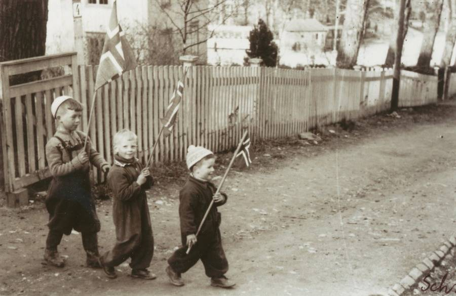 Kids Holding Flags