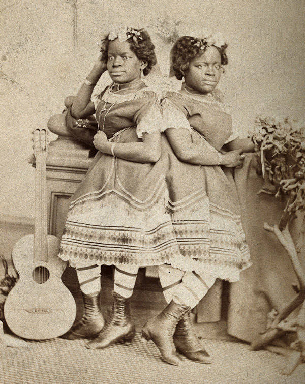 Mccoy Twins