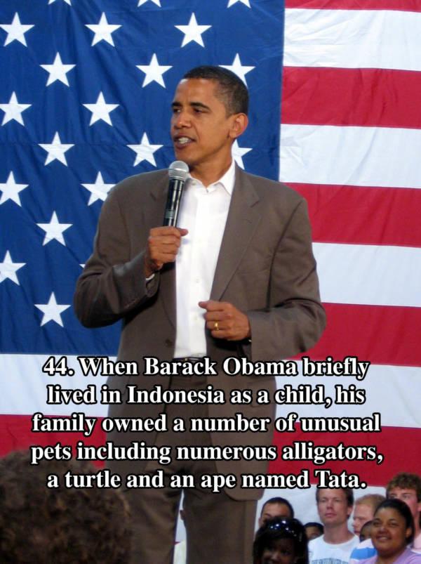 Obama Tata