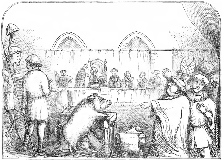 Pig Standing Trial