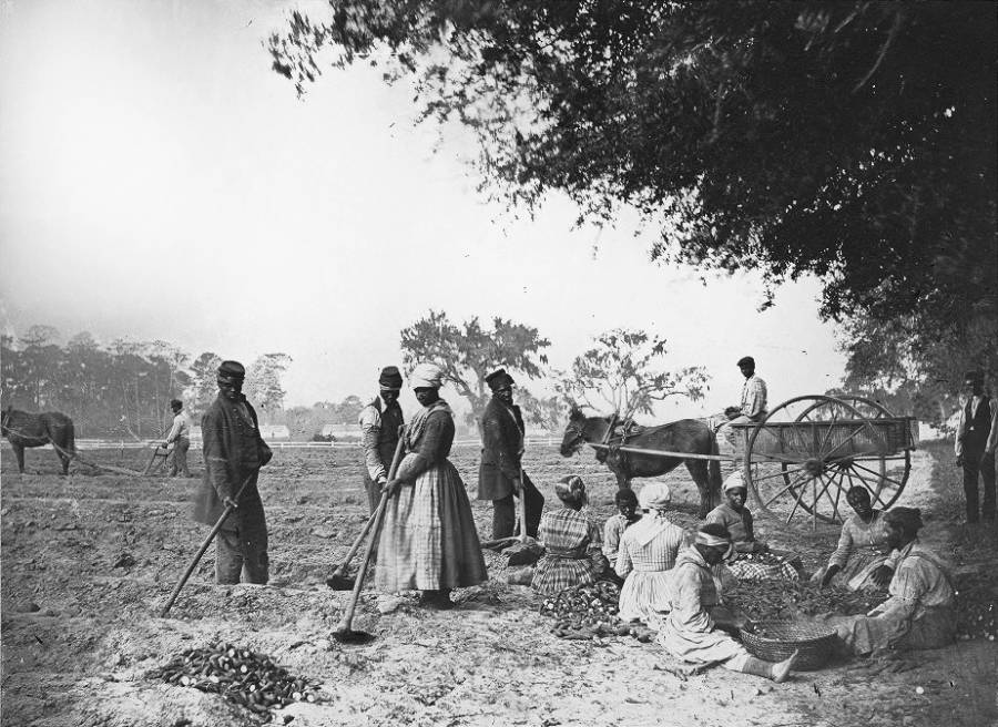 Slaves In The South
