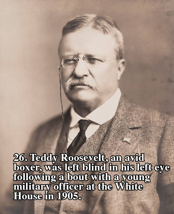Roosevelt Boxer