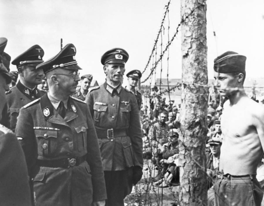 Heinrich Himmler looking at a POW