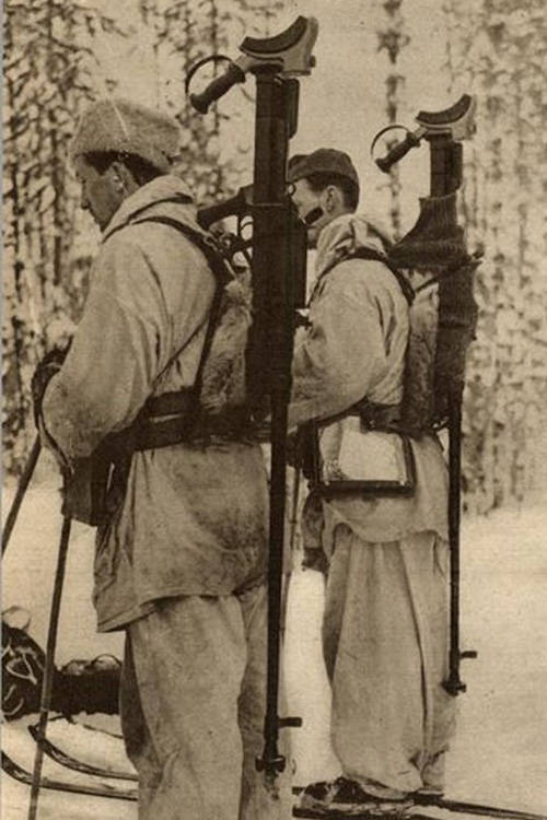 Swedish volunteer soldiers