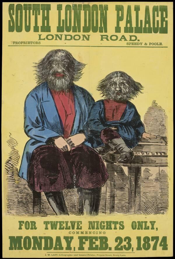 Victorian Freak Show Poster