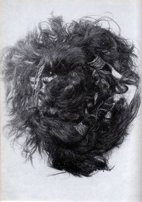 Arden Hair
