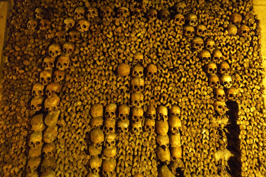 Arranged skulls in the Paris Catacombs