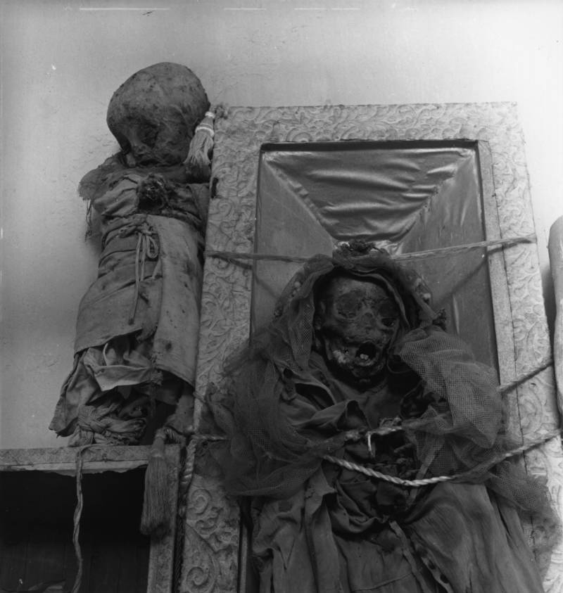 Babies Mummies