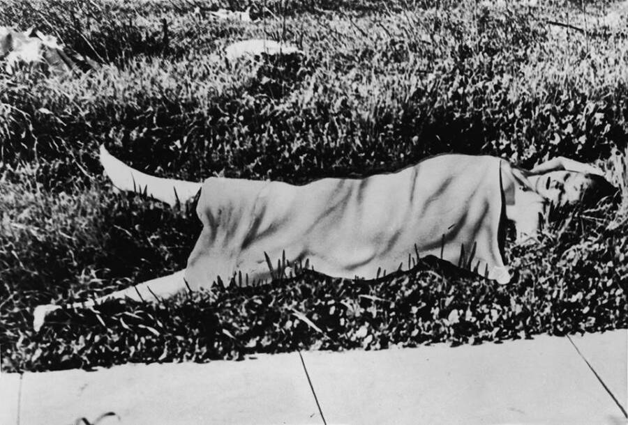 Black Dahlia Murder Scene