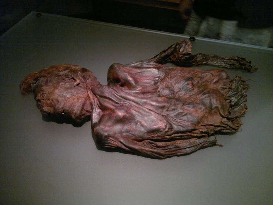 Bog Bodies Clonycavan Man
