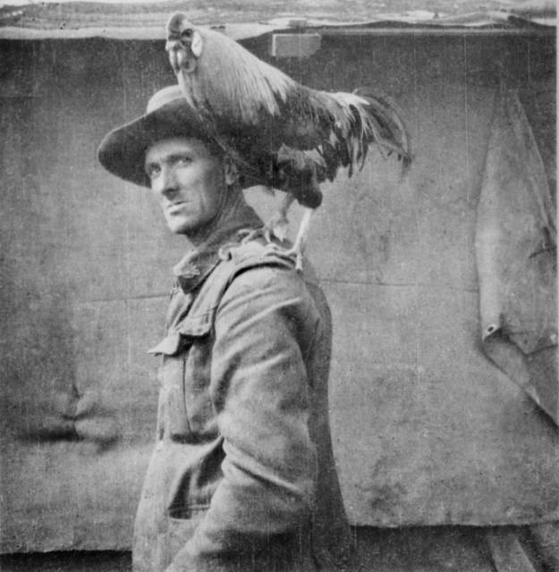 Australian Army's Jack The Chicken