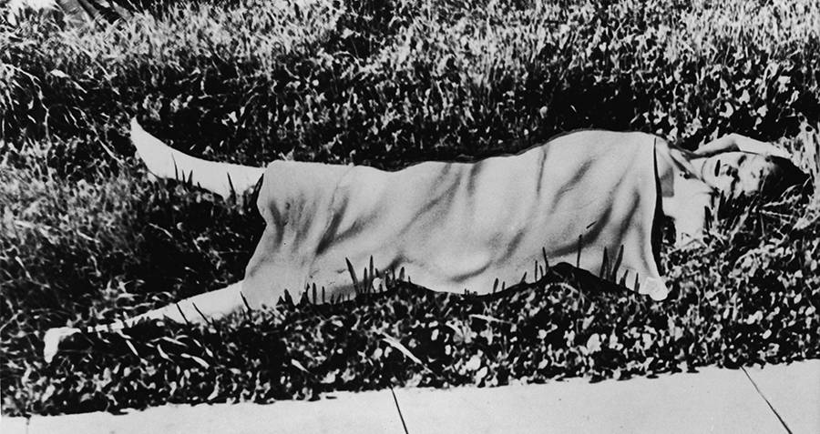 Black Dahlia Dead
