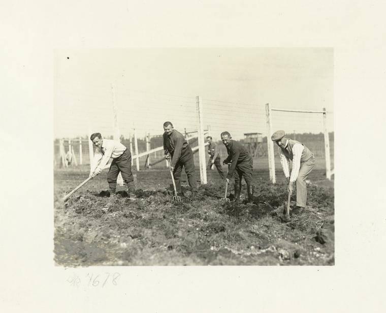 German Prisoners At Work