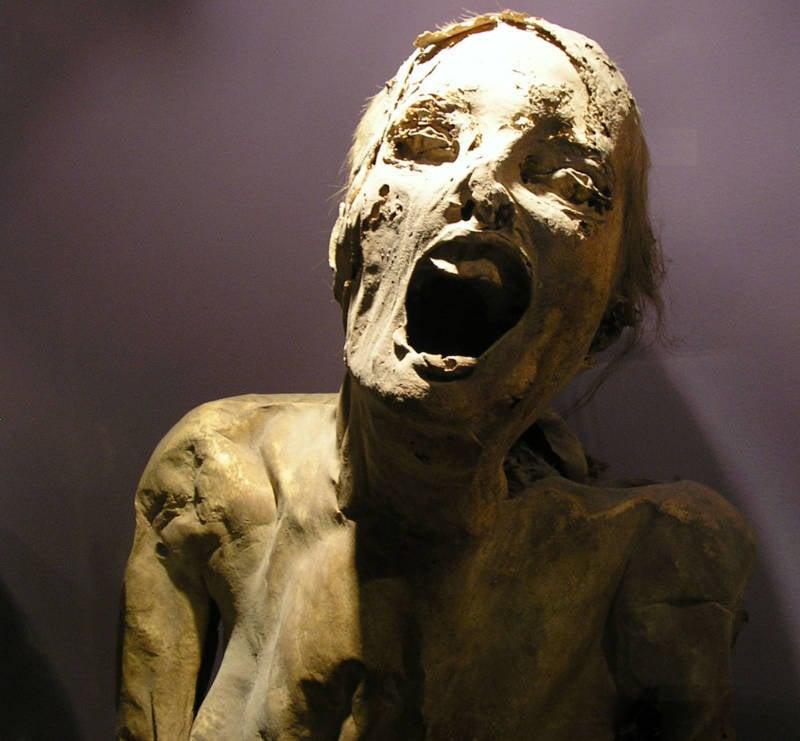Guanajuato Mummies Face