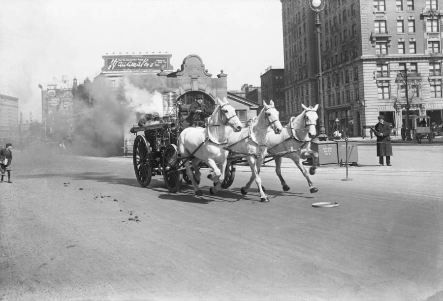 Horse Fire Engine