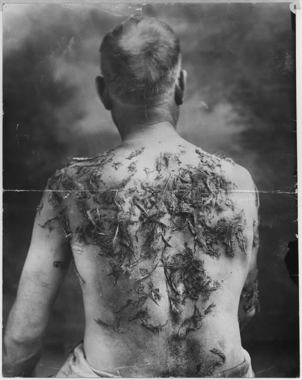 John Meintz Back Feathers