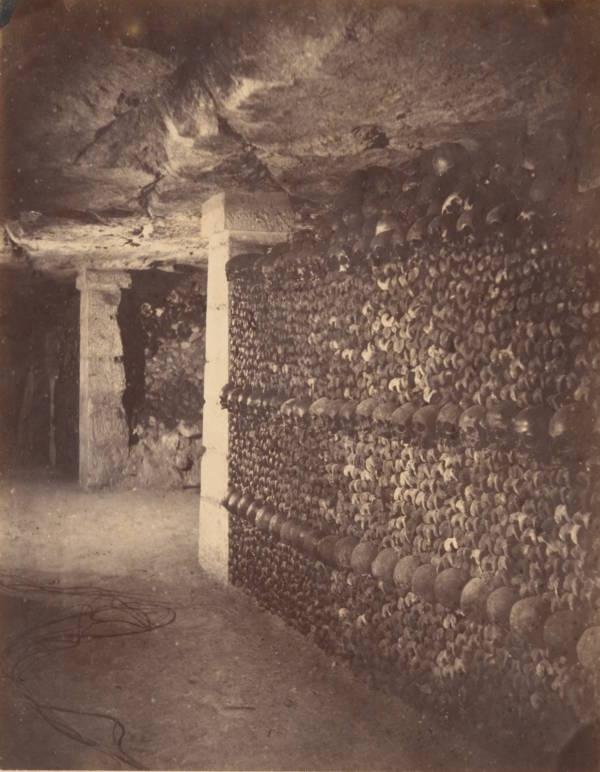 Nadar Wall Skulls Museo