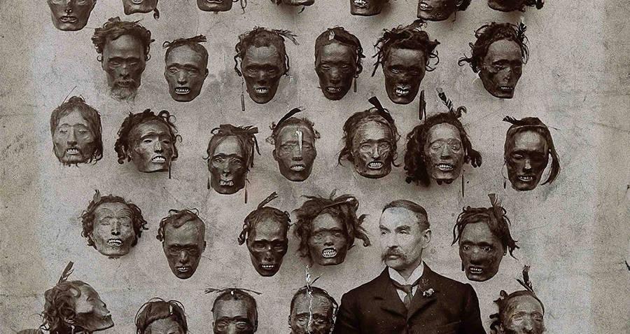 Mokomokai Heads