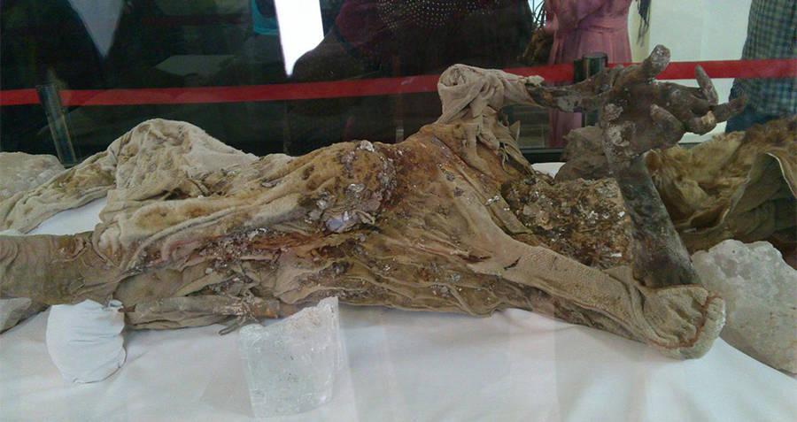 Saltman Mummy