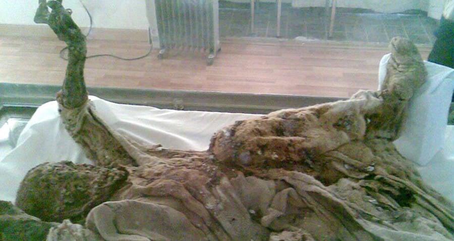 Salt Men Mummies