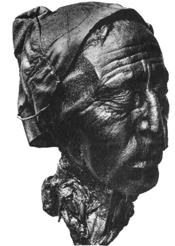 Tollund Man Head