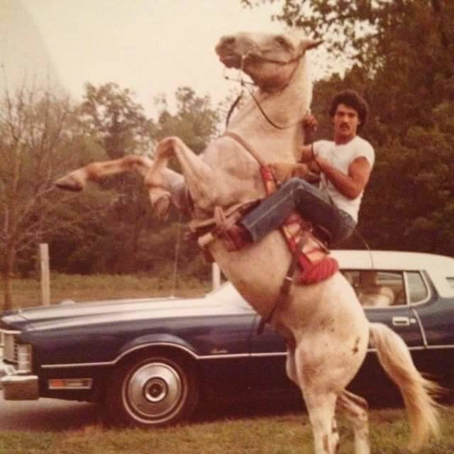 Vintage Photos Horse Wheelie