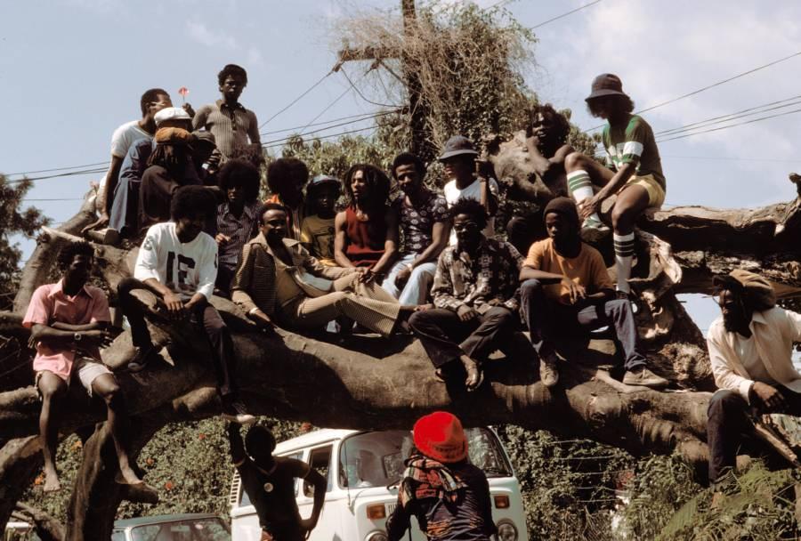 Wailers Jacksons