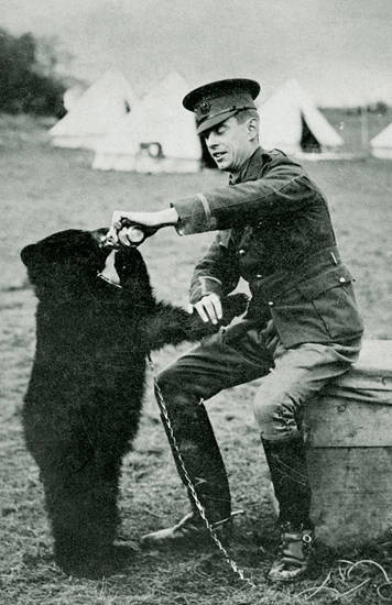 Canadian Army Winnie The Bear