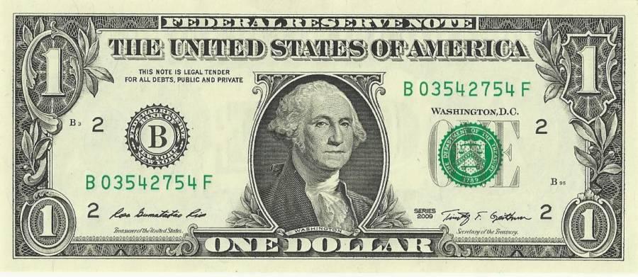 American Dollar Buck