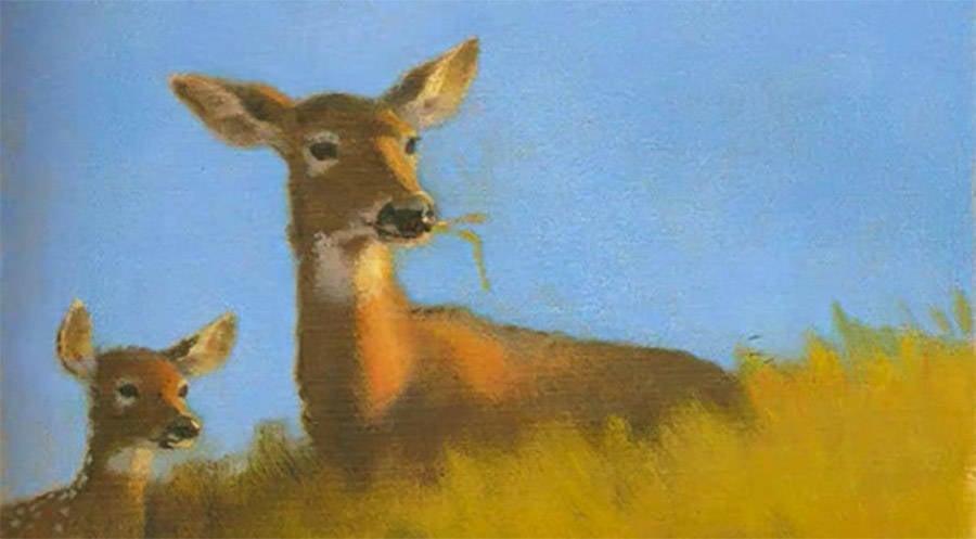 Dark Disney Stories Bambi